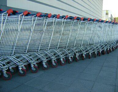 Jak będziemy robić zakupy po COVID-19. Co zostanie z nami na zawsze?