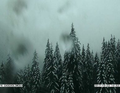 W Tatrach już śnieg. Morskie Oko i Dolina Pięciu Stawów toną w białych...