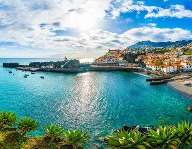 Grecja, Włochy, Chorwacja. Kiedy i na jakich zasadach europejskie kraje...