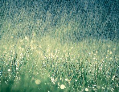 Pogoda na weekend. Idzie ochłodzenie z przelotnymi opadami deszczu i...