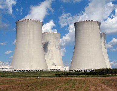 Bałtycka Elektrownia Jądrowa wkrótce bez tajemnic?