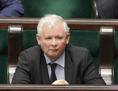"""Kaczyński zdradził, co będzie robił na emeryturze. """"Hodowla byków i rodeo"""""""
