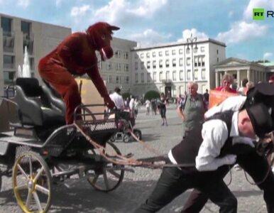 Niemieccy obrońcy praw zwierząt jako... konie ciągnące bryczkę