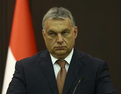 """Burza po słowach ambasadora. Węgry podjęły """"najbardziej radykalny krok w..."""