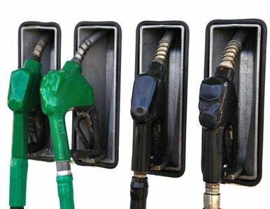 Diesel tańszy od benzyny. Pierwszy raz od czterech miesięcy