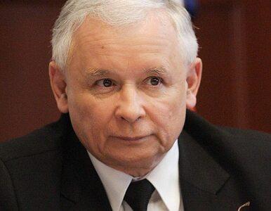 Najnowszy sondaż: PO daleko za PiS, Palikot poza Sejmem