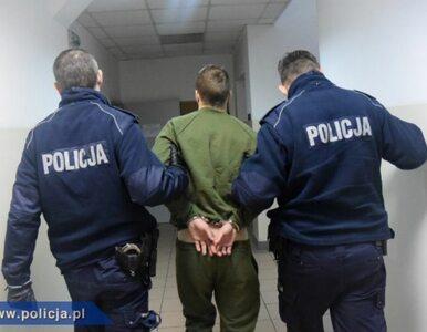 Złapali Polaka podejrzanego o pobicie ze skutkiem śmiertelnym na terenie...