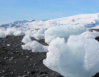 """""""Monumentalne"""" porozumienie w sprawie klimatu. Dotyczy m.in. lodówek i..."""