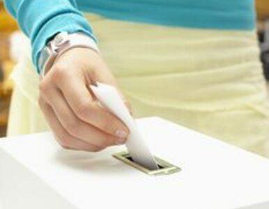 Bułgarskie wybory z licznymi naruszeniami