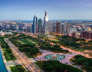 Chicago. Kawałek Polski za oceanem