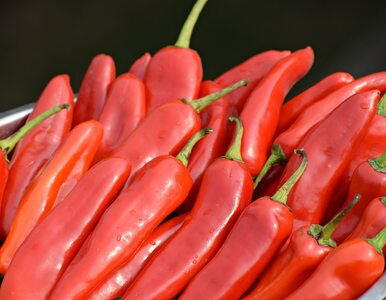 Rak płuc. Papryczki chili mogą zmniejszyć ryzyko przerzutów
