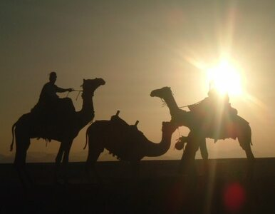 Egipt - wczasy z dziećmi w Hurghadzie. Jakich atrakcji dla dzieci...