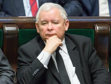 Platforma Obywatelska złożyła zawiadomienie do prokuratury ws. Jarosława...