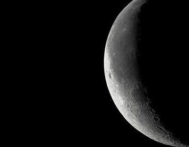 Polacy stworzą koparkę do prac na... Księżycu?