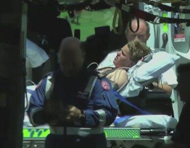 Nastolatek drażnił rekina. Po ataku trafił do szpitala