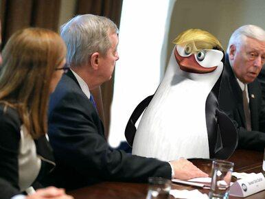 Pingwin zamiast Trumpa na oficjalnych zdjęciach. Jaki jest powód?