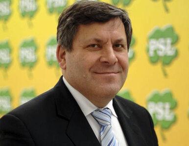 Piechociński: Koalicja PSL, PO i PiS albo państwo wyznaniowo-plemienne