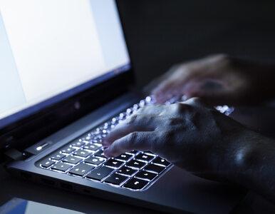 1859 zarzutów dla internetowego oszusta. Nabrał blisko 2 tys. osób