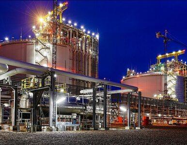 Napieralski chwali gazoport w Świnoujściu: Potężna, niesamowita inwestycja