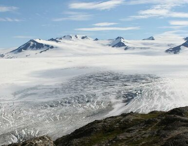 Polska stacja w Antarktyce ma 40 lat. Jej przyszłość jest niepewna