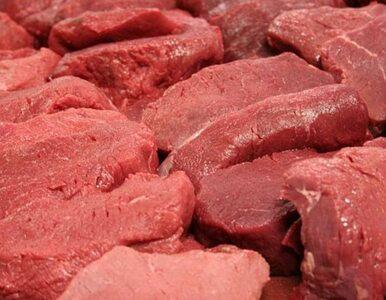 Wieźli zepsute mięso, by... sprzedawać szaszłyki pod cmentarzem