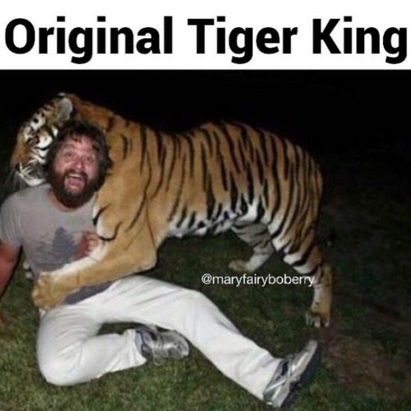 Oryginalny król tygrysów