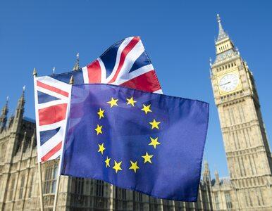Brexit. Do ustalenia jest nadal około 800 umów handlowych. Ponad 50...
