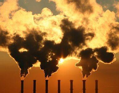 Polska nie będzie musiała zrezygnować z węgla?