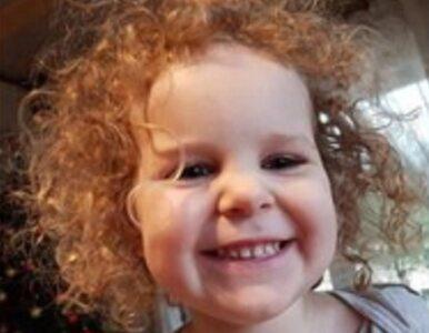 Porwanie 3-letniej Amelki i jej mamy. Policja ujawnia wizerunek ojca