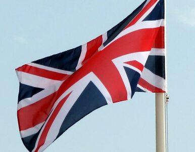 Quiz o sporcie oblany. Brytyjczycy mają swoją Joannę Muchę