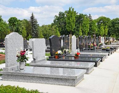 Dewastacja cmentarza w Małopolsce. Policja szuka sprawców
