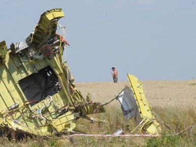 Zestrzelenie MH17. Holandia i Australia oficjalnie oskarżają Rosję