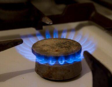 Poszukiwanie i wydobywanie gazu z łupków będzie łatwiejsze. Prezydent...
