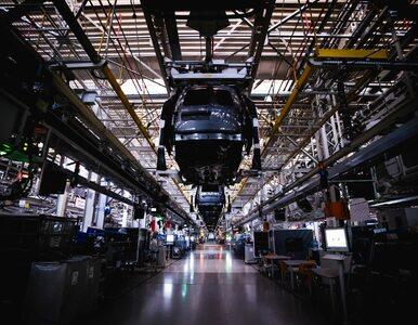 Producenci apelują do UE: Pozwólcie nam produkować samochody