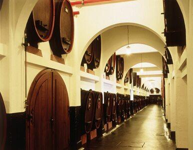 Henkell i Freixenet łączą siły.  Powstaje wiodący producent win musujących