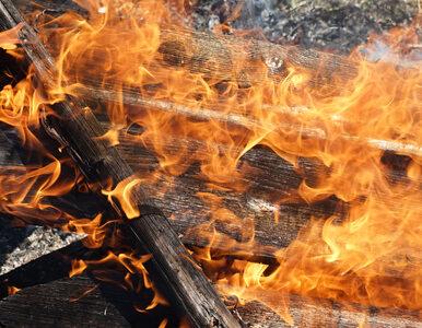 Kędzierzyn-Koźle. Ogromny pożar na składowisku odpadów, normy pyłów...