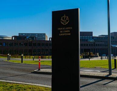 Coraz więcej frankowiczów wygrywa przed sądem. Wyrok TSUE wywołał lawinę