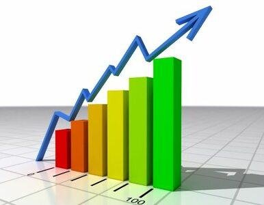 Petru: seria podwyżek stóp procentowych nam nie grozi