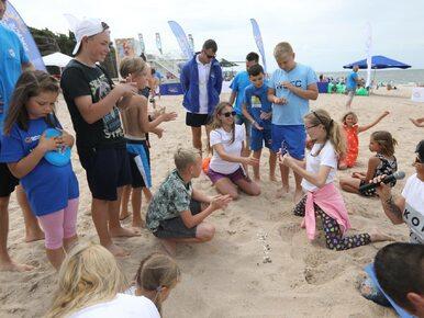 """Akcja Platformy na plażach wyśmiana. """"Nawet wakacje potrafią obrzydzić"""",..."""