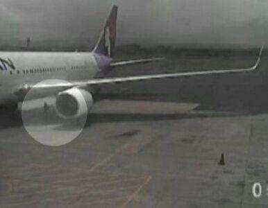 Przeżył lot ukryty w podwoziu samolotu. Lotnisko pokazuje wideo
