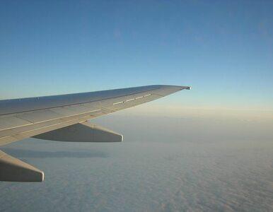 Chicago: samolot wylądował na... trawie