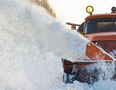 Polska zasypana. Ile zapłacimy za atak śnieżycy