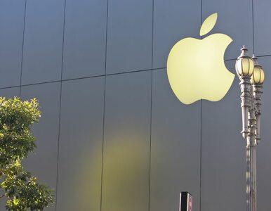 Czy Apple zadziwi jutro rynek tabletów?