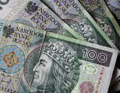 Polacy są zadłużeni na ponad 164 mld złotych