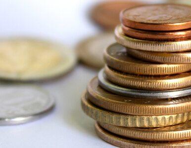 Odnaleziono monety z czasów Zygmunta III Wazy