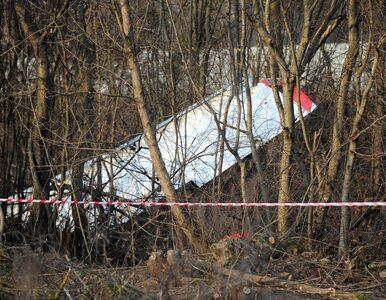 Wiceszef podkomisji smoleńskiej: Przyczyną katastrofy była seria...