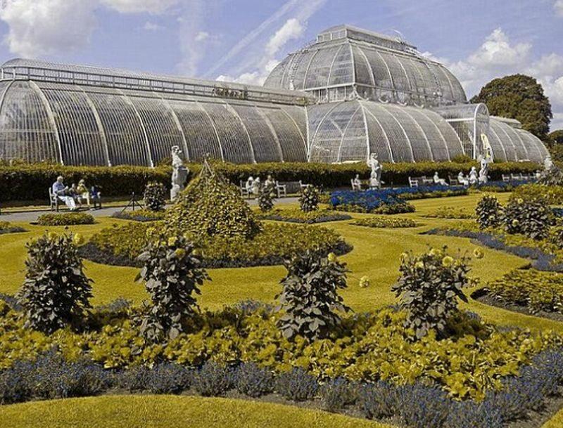 Kew Garden w Londynie dla osoby z daltonizmem Deuteranopia (tzw. daltonizm) to nierozpoznawanie barwy zielonej (mylenie jej z czerwoną).