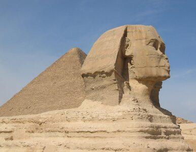 Niezwykłe odkrycie w Egipcie. Znaleziono drugiego sfinksa