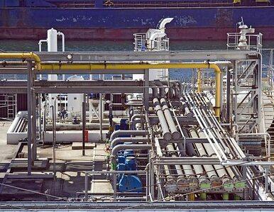 Nikozja szuka gazu