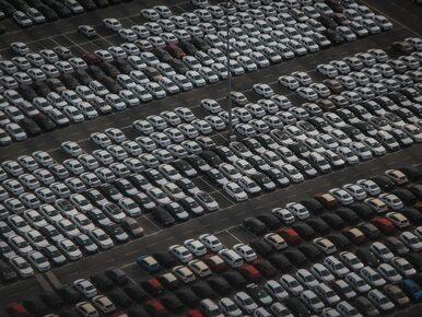 Branża dealerów samochodów to najbardziej polska branża naszej gospodarki